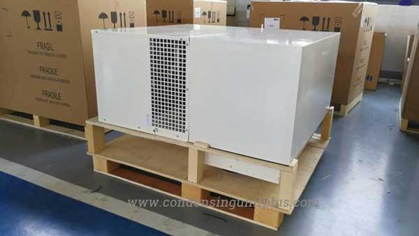 Monoblock unit package